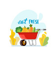 wheelbarrow full of ripe vector image