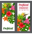 Banners with stylized tropical plants leaves and vector image vector image