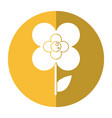 buttercup flower natural shadow vector image vector image