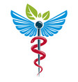 caduceus symbol composed with poisonous snakes vector image vector image