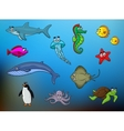 Cartoon happy smiling sea animals characters vector image vector image