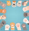 cats paw background funny domestic kitten pets vector image vector image