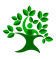 green family tree vector image vector image