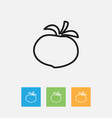 of food symbol on tomato vector image