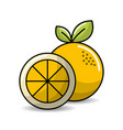 orange fruit icon stock vector image