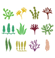 Seaweed icons set - nature food trends concept vector image vector image