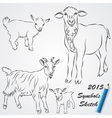 Sketch drawing of goats Chinese 2015 new year vector image