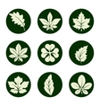 Leaves icons set vector image