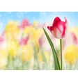 Pink tulip create with a selective focus EPS 10 vector image