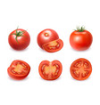 realistic detailed 3d fresh red tomatoes set vector image vector image