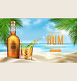 rum bottle and glass with ice stand on sandy beach vector image vector image