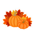 autumn design with autumn leaves and pumpkins vector image