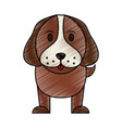 color pencil cartoon front view dog animal vector image