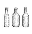 glass bottles set alcoholic beverages sketch vector image