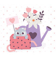 happy valentines day cute cat in gift box and vector image vector image
