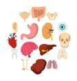 human organs set flat icons vector image vector image