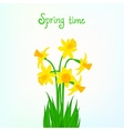 Spring card background with daffodil vector image vector image