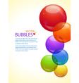 colourful bubble background portrait vector image vector image