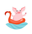 cute cartoon pig character with rubber flamingo vector image
