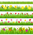 Flower Borders Set vector image vector image