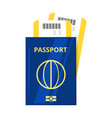 international passport and tickets vector image