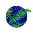 palm leaves silhouette tropical vector image