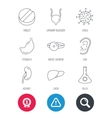 Virus tablet and stomach organ icons vector image vector image