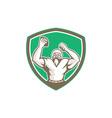American Football Holding Ball Celebrating Shield vector image vector image