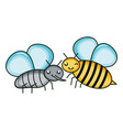 cute fly and bee insects kawaii characters vector image