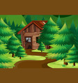 old wooden cottage in the woods vector image