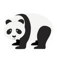 panda flat design isolated vector image