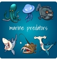 shark piranha jellyfish and other vector image vector image