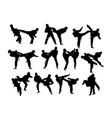 taekwondo sport activity vector image