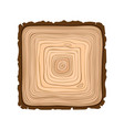 texture of square sawn wood brown object vector image