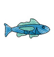 isolated fish design vector image