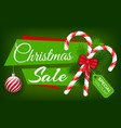 christmas sale special discounts green poster vector image vector image