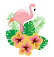 flamingos flower vector image vector image