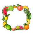 square frame of tropical fruits with empty place vector image vector image