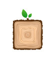 texture of square sawn wood brown object with vector image vector image