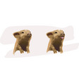 two merry piglets vector image