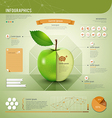 Apple infographics template design vector image vector image