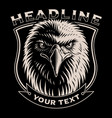 black and white of eagle head vector image
