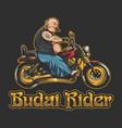 budai rider vector image vector image