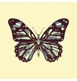 butterfly in zentagle style vector image