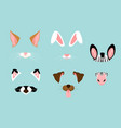 cute and nice animal ears vector image vector image