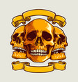 human art skull with banner vector image