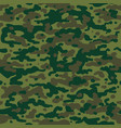 hunting camouflage pattern vector image