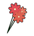 isolated cute flowers vector image vector image