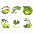 olive oil and landscapes vector image vector image