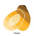 Papaya icon vector image vector image